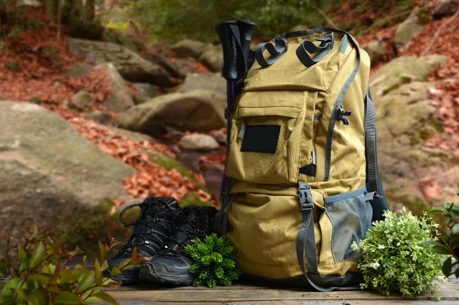 Yellow backpack and black hiking shoes