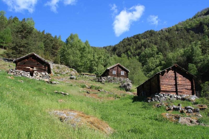 Cultural landscape with old wooden cottages along Kongevegen over Filefjell