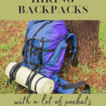 Backpack with a lot of pockets blue and purple colour